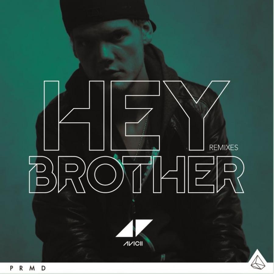 Hey Brother, torna in radio il dj delle grandi canzoni AVICII