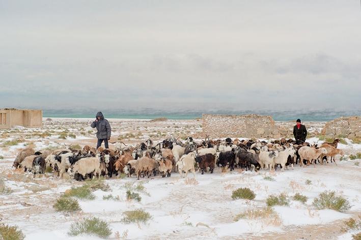I Sogni del Lago Salato: un film di  Andrea Segre