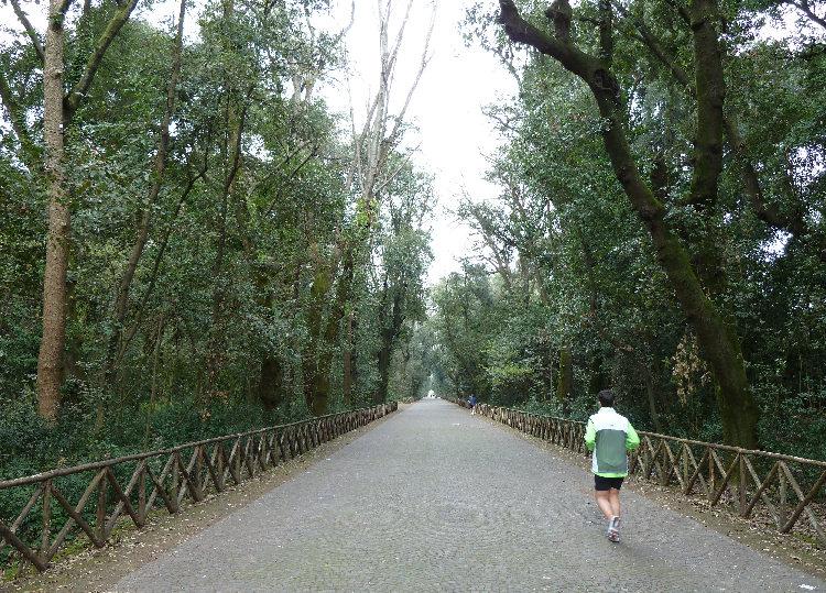 Una Giornata per il Parco di Capodimonte