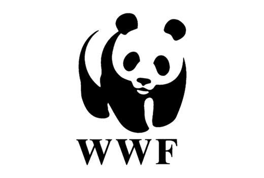 WWF Napoli al Maschio Angioino