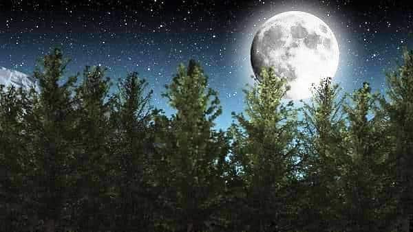 Appuntamento per questa sera con la Superluna