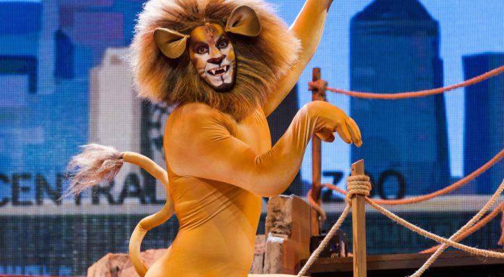 """Al Teatro Brancaccio in scena  il Musical """"Madagascar"""""""