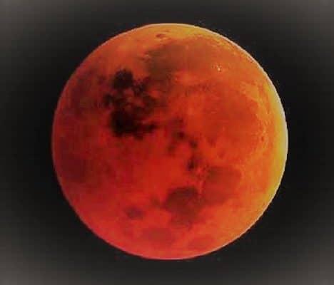 Sulla Luna germoglia una piantina di cotone