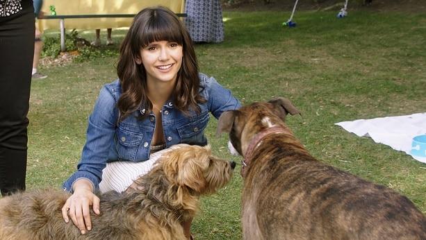 Dog Days, il film con Finn Wolfhard, Vanessa Hudgens, Eva Longoria e Nina Dobrev