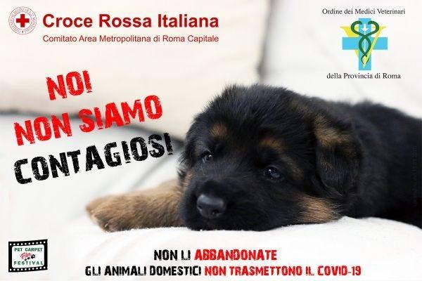 #noinonsiamocontagiosi, al via la campagna contro l'abbandono di cani e gatti