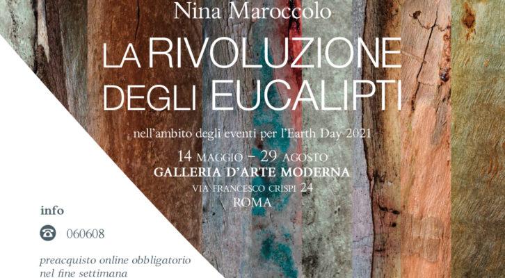 """La Galleria d'Arte Moderna ospita la mostra """"La rivoluzione degli eucalipti""""di Nina Maroccolo"""